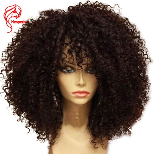 Hesperis 13x6 Curly Human Hair Wigs Pre Plucked Lace Front Human Hair Wigs Brazilian Curl Lace Front Wigs For Women